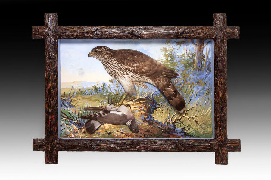 Exceptionally rare collection of dioramas